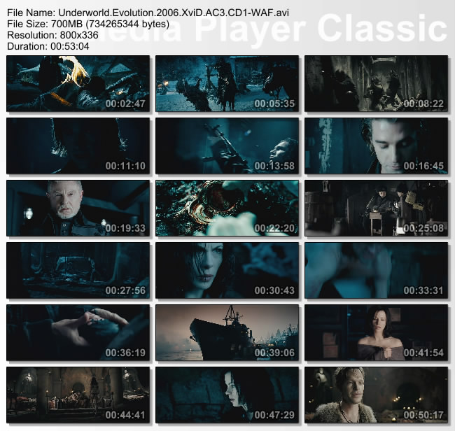 Underworld.Evolution.2006.XviD.AC3.CD1-WAF