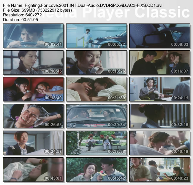 Fighting.For.Love.2001.INT.Dual-Audio.DVDRiP.XviD.AC3-FiXS.CD1