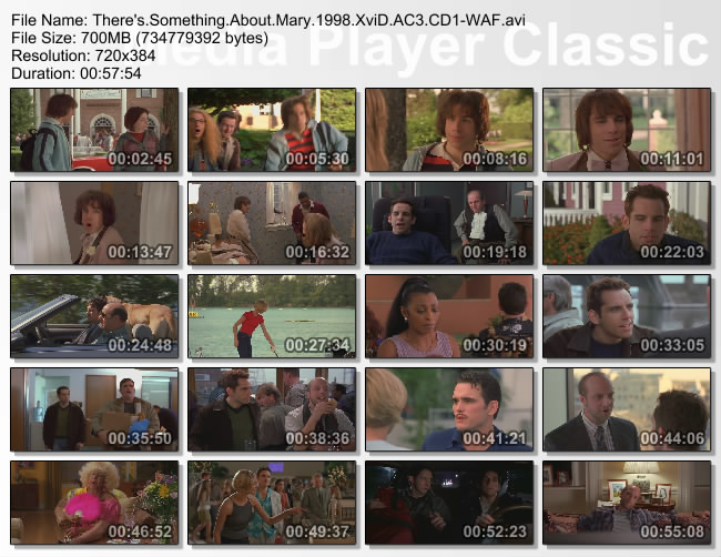 There's.Something.About.Mary.1998.XviD.AC3.CD1-WAF