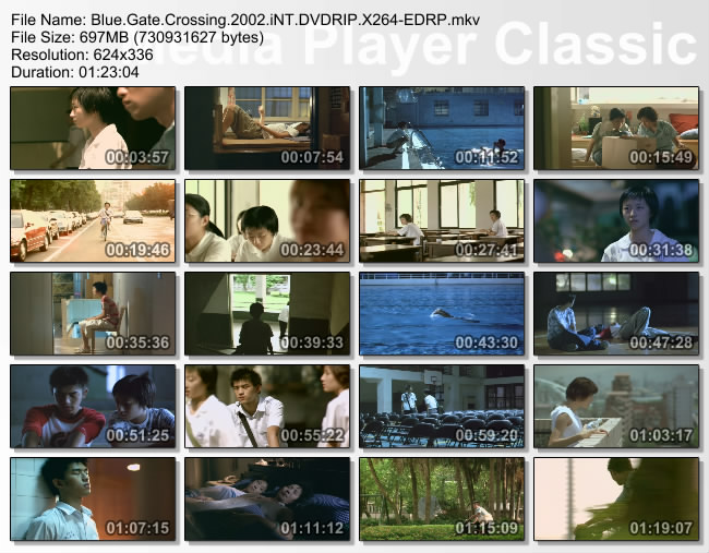 Blue.Gate.Crossing.2002.iNT.DVDRIP.X264-EDRP