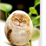 石头猫可爱造型抱枕 Bella