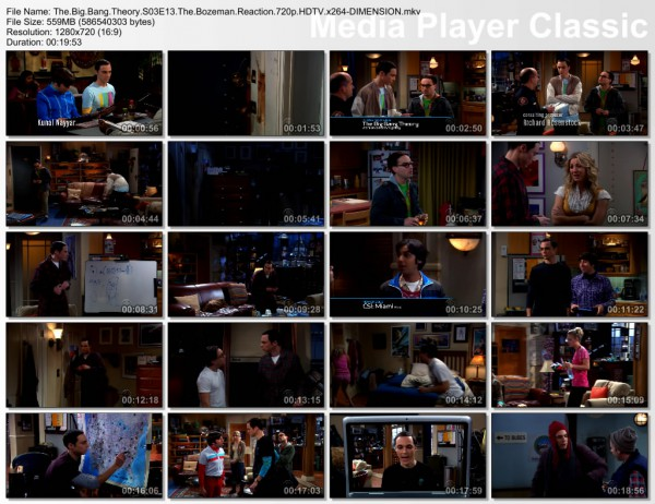 The Big Bang Theory s03e13