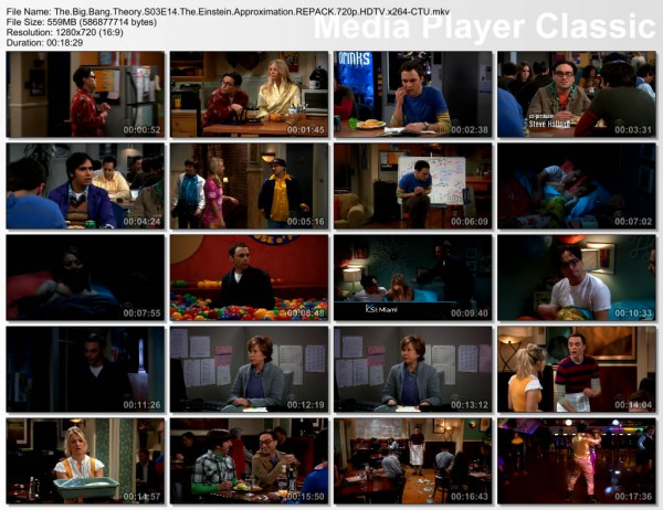 The Big Bang Theory s03e14