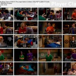 The Big Bang Theory s03e15