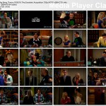 The Big Bang Theory s03e16
