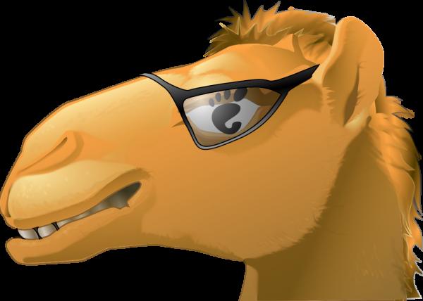 encounter-camel