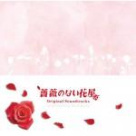 no-rose-02