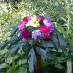 招蜂引蝶花芬芳。