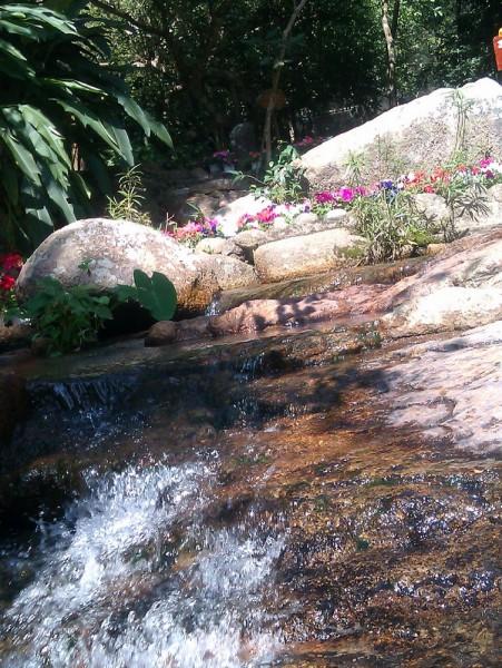 蝴蝶谷里溪水荡。
