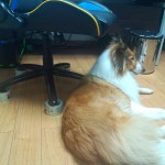 chair-wheel-protector