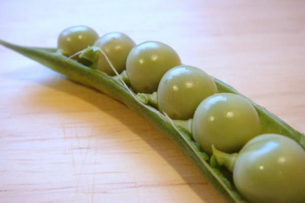 MrWoodnz - Peas in a Pod
